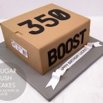 Adidas Boost 350 box cake