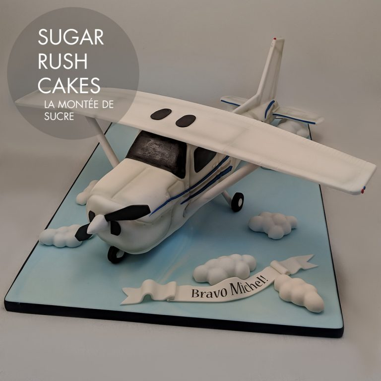 Cessna 182 airplane cake